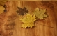 Maple leaf table with shelf- leaves